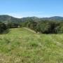 Quintas de 5000m2 en ATENAS, con vista y muy planas.