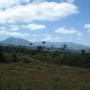 Lotes Para Quintas en la Montaña  / Lots for Quints in the Rain Forest