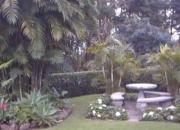 Diseño,Decoración y Mantenimiento de Jardines