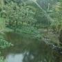 Quinta en Guapiles