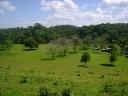 Se vende finca de 150 hectareas en Guanacaste