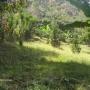 venta de propiedad en la montaña, a tan solo 30 min de San Jose, 3.425 mts 2