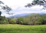 Finca (farm/ranch) miramar, puntarenas, costa rica