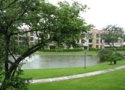 10-229 moderno apartamento amueblado en alquiler en santa ana