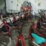 Vendo 19 bicicletas profesionales CICADEX