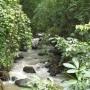 vendo finca en Costa Rica