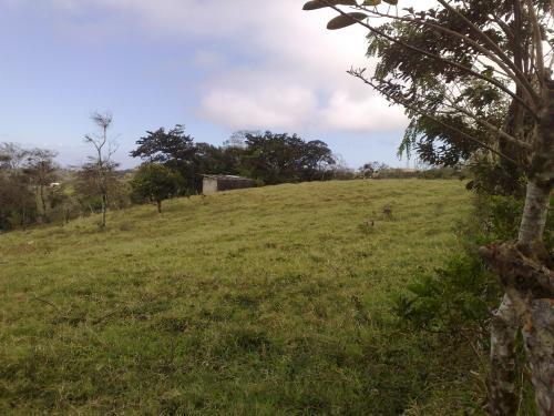 Quinta tilaran guanacaste