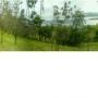 Venta de Finca en Tilaran, frente al Lago Arenal
