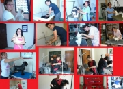 academia de peluqueria canina