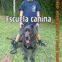 ADIESTRAMIENTO Y Venta de Perros Entrenados (PERROS DE SEGURIDAD)