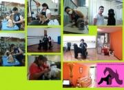 cursos de grooming canino   * peluqueria canina