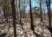 Finca de 783 hectareas en Sardinal de Guanacaste, $1 por metro