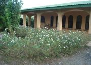 Se alquila bella quinta en Liberia Guanacaste
