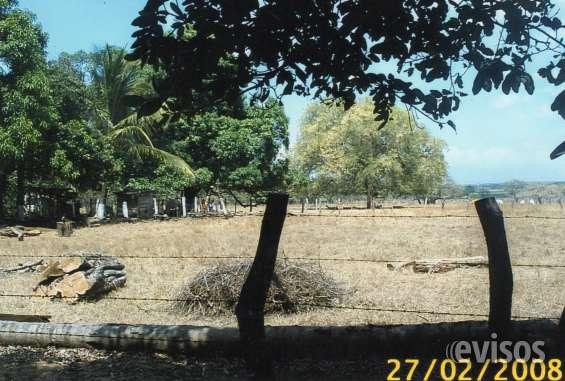 """Fotos de """"bella propiedad en carrillo, guanacaste"""" 3"""