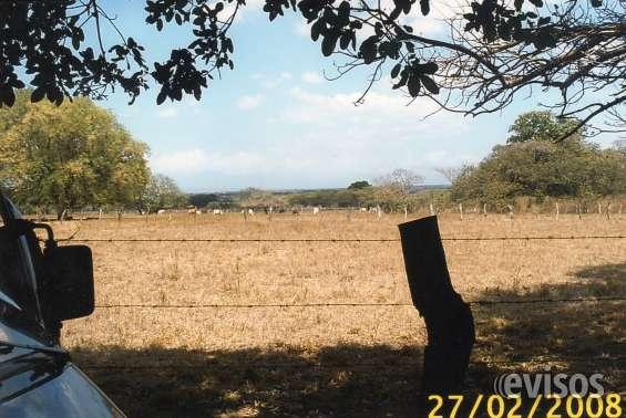 """Fotos de """"bella propiedad en carrillo, guanacaste"""" 2"""