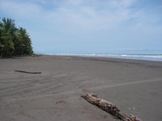 Finca bejuco #9 playa bejuco