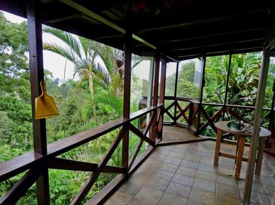 Villa con casa, 3 apartamentos, 1800 m2 terreno, san ramon de tres rios
