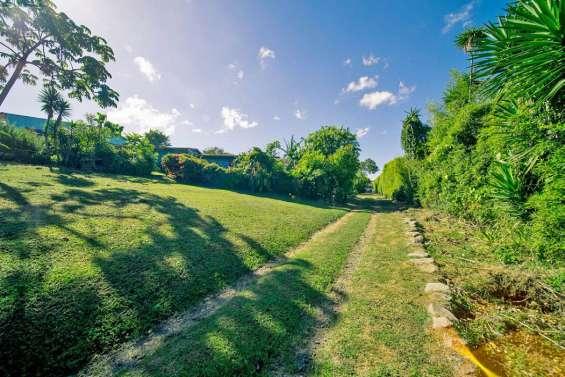 Lote de 1 hectarea, ideal para desarrollar, san rafael, montes de oca
