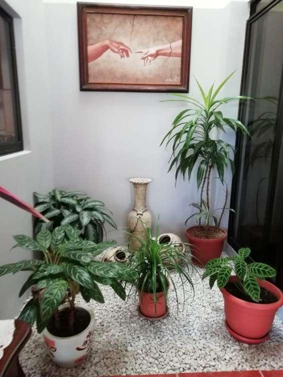 Fotos de Se vende condominio en san rafael de montes de oca (condominio la montaña) 9